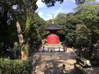 1023_ikegami01.jpg