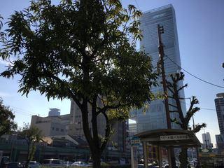 1219_KYOKAMON02.jpg