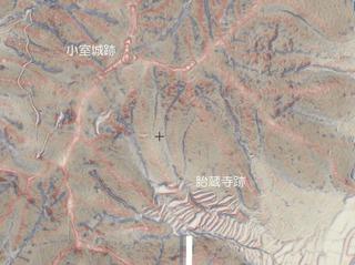 小室城跡のGIS図.jpg