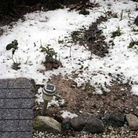 大晦日の雪-1