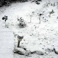 大晦日の雪-2