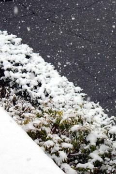 雪-020402