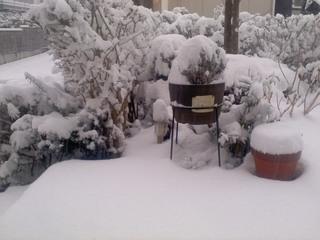 2014積雪-01