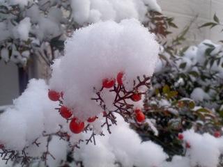 0306-雪02