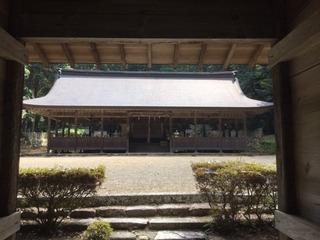 TAKIO_image1.jpeg