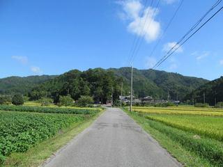 kosaka_01.jpg