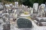 峰堂-墓地