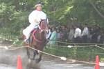 葵祭-走馬