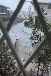 初雪_01