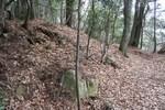 一本杉-砦跡