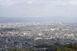 嵐山-桂を見る