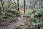 嵐山-篠の道