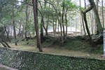 嵐山-苔寺そば