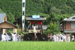 水無月-青田と山車