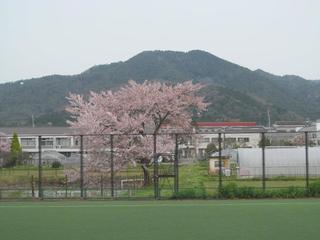 0410_sports02.jpg