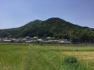 0520_hatuda04.jpg