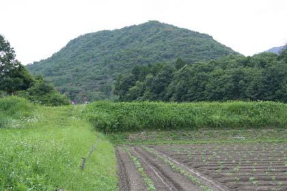 木津-遠望