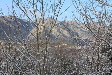 雪_317松尾