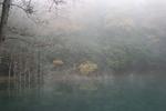霧-浜谷池01