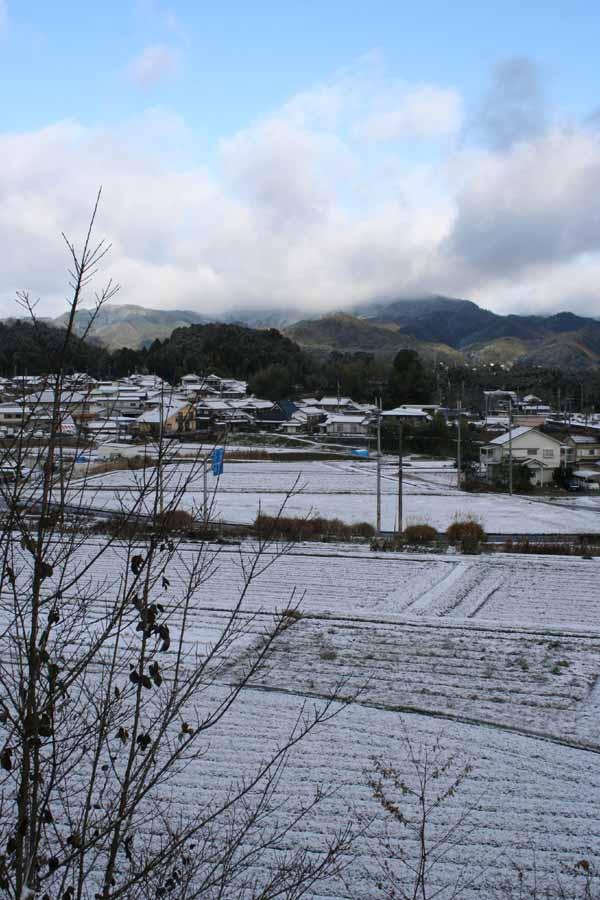 家-2009初雪01