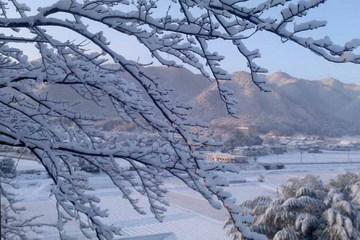 2012初雪_01