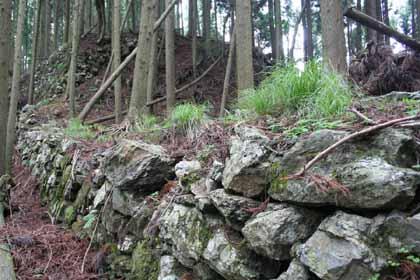 周山2-石垣
