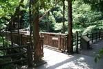 瀧山-かづら橋