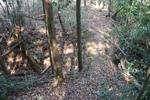 籾井-土橋と堀切