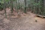 嵐山-苔寺分岐点