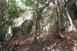 嵐山-大岩