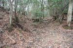 嵐山-最南端堀切