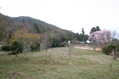 滝峰-遠望