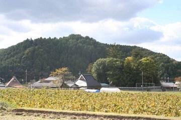日吉-東胡麻城を遠望
